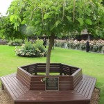 Red Cadeaux's bench